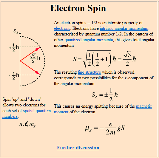 picture - food electron spinoza