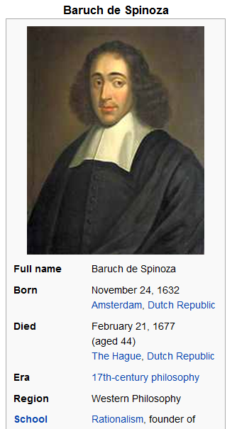 picture - food spinoza